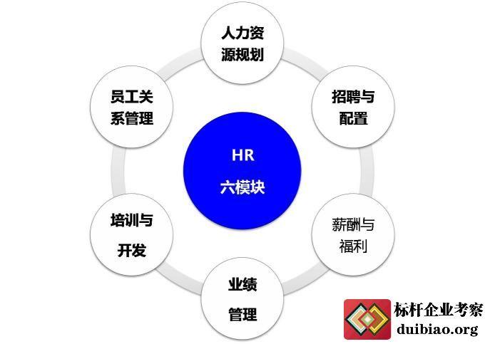 大学人力资源管理考试题库图片